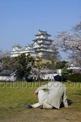 Himeji Castle man