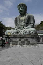 big buddha kamakura photo