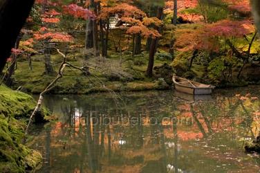 kokedera moss temple garden kyoto