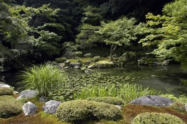 nanzenji garden summer