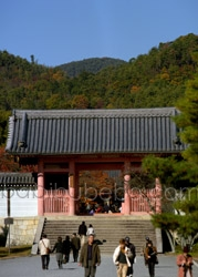 ninnanji gate unesco world heritage photo