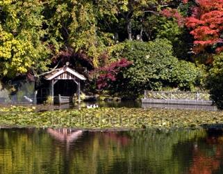 ryoanji lake boat