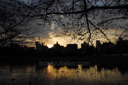 ueno park sunrise tokyo