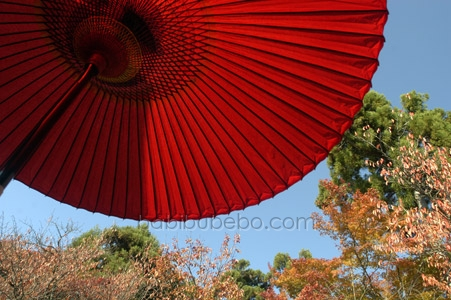 kyoto ryoanji umbrella