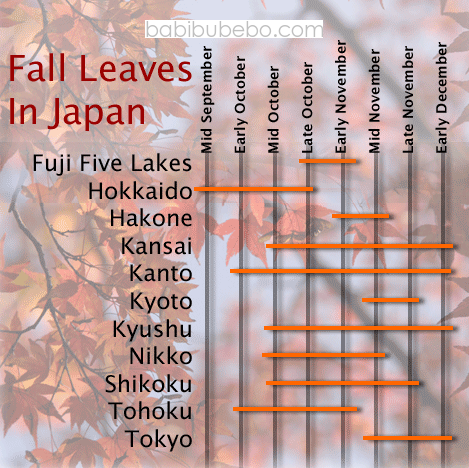 fall leaves chart babibubebo.com