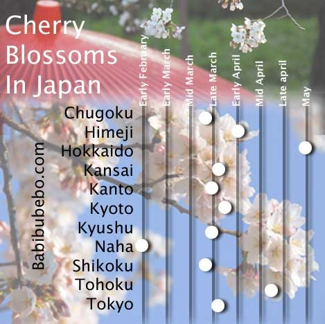 average cherry blossom dates