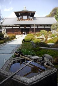 Tofukuji Temple Kyoto Garden