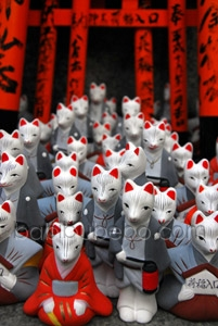 Fushimi Inari Torii Gates and Foxes